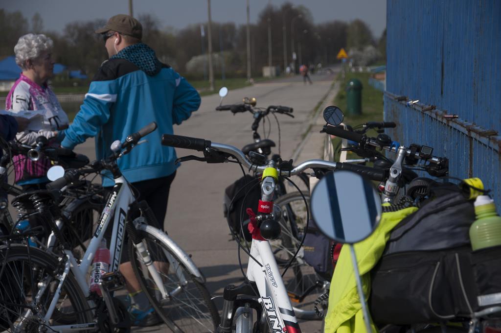 Rowery uczestników rajdu rowerowego