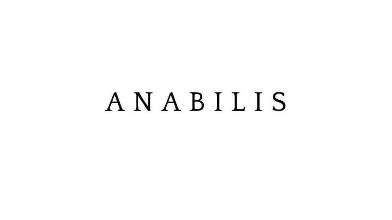 Logo Anabilis