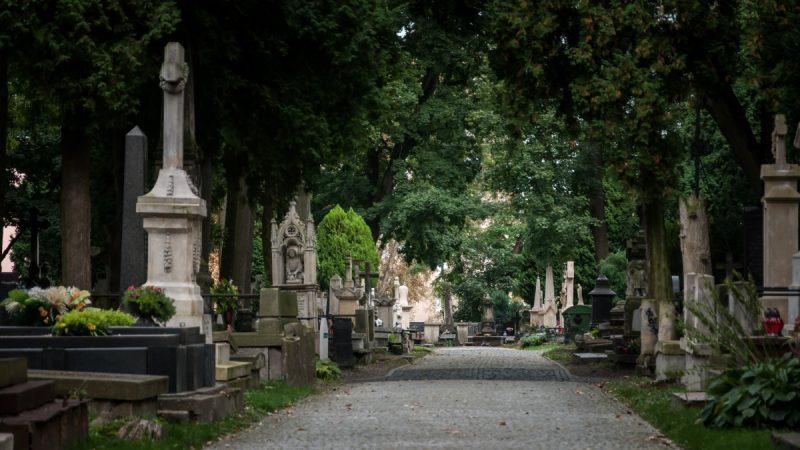 Cmentarz przy ul. Lipowej