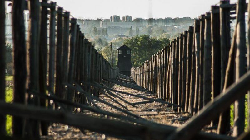 Państwowe Muzeum na Majdanku, widok na ogrodzenie